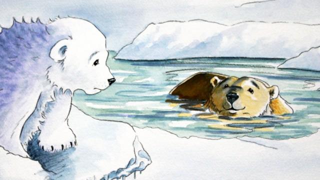 Cold polar bear